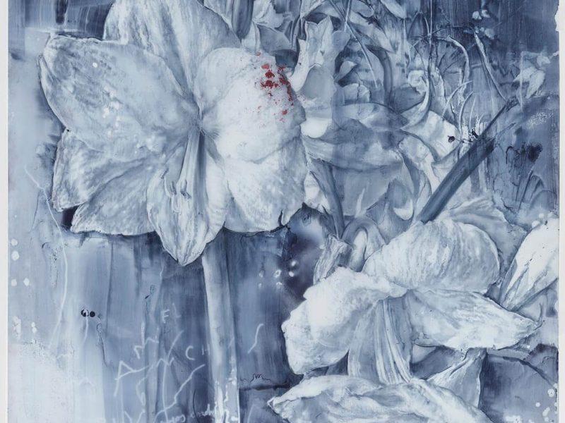 Flores blancas con leves manchas de cárdeno