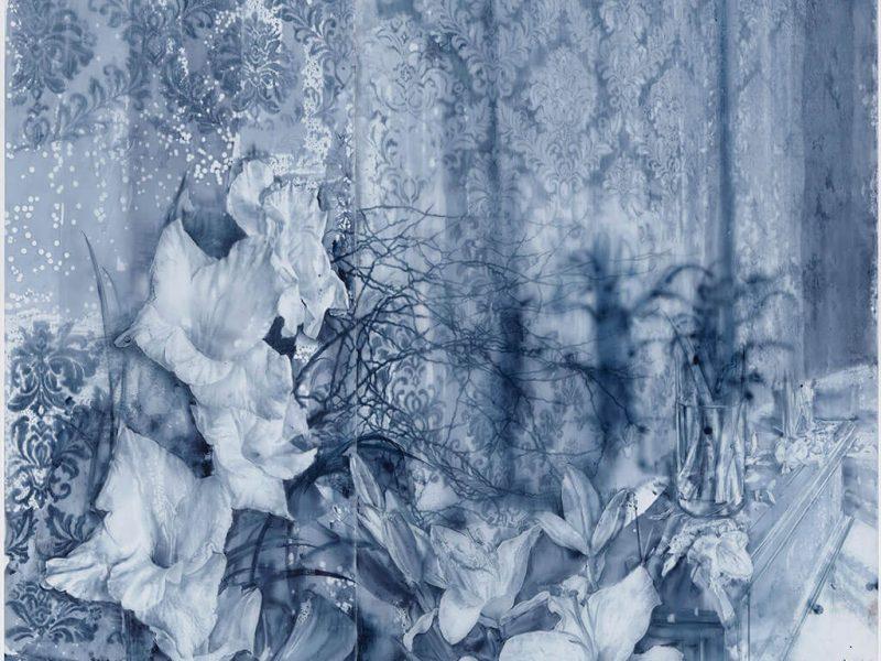Extrañas flores de silencio